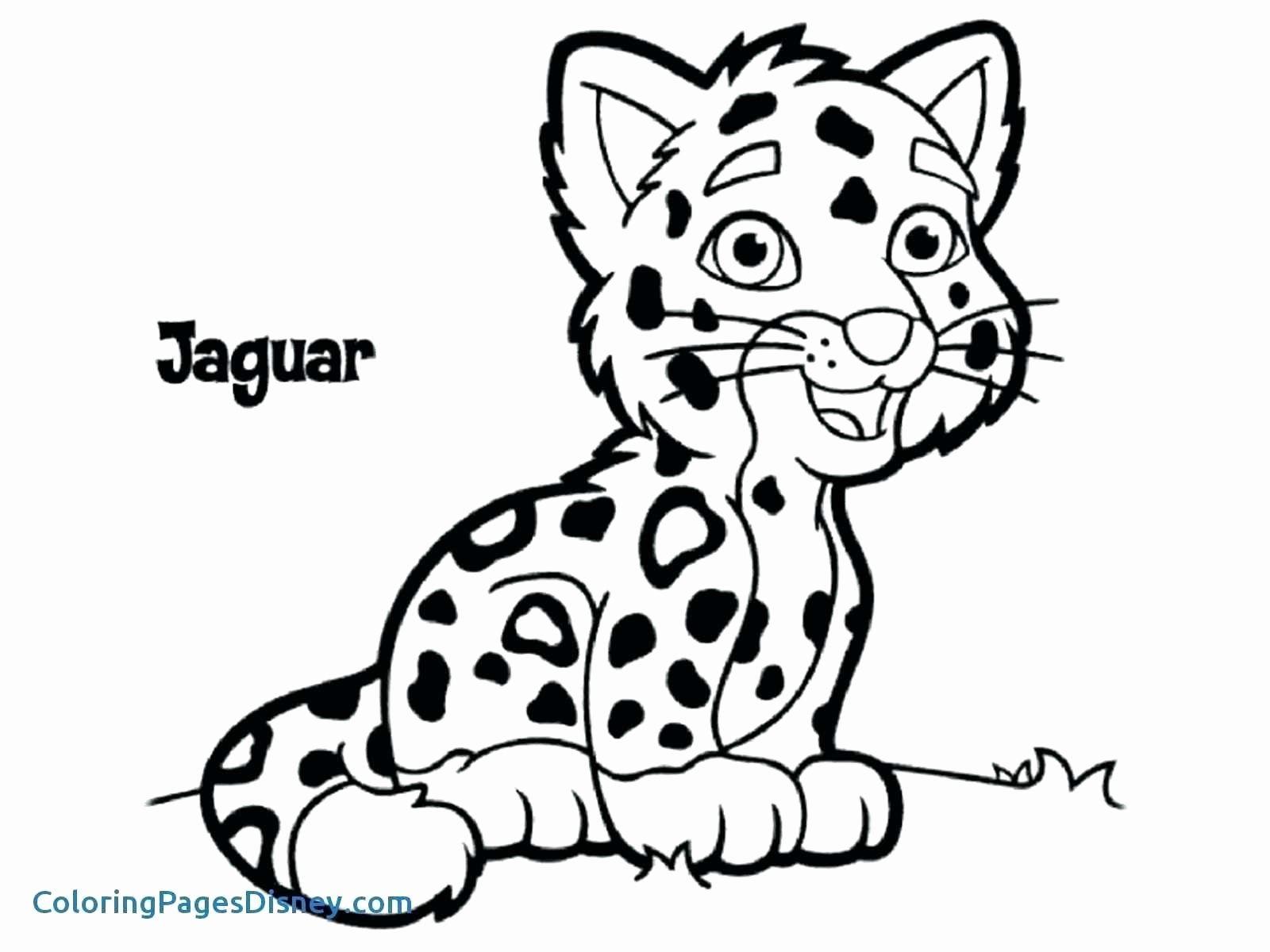 Cute Cartoon Animal Coloring Pages Elegant Cheetah Coloring Pages For Adults Navajosheet