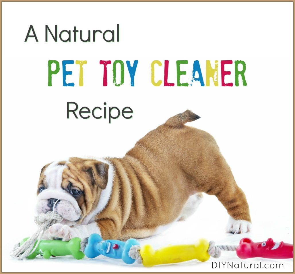 Pin On Pet Toy Cleaner