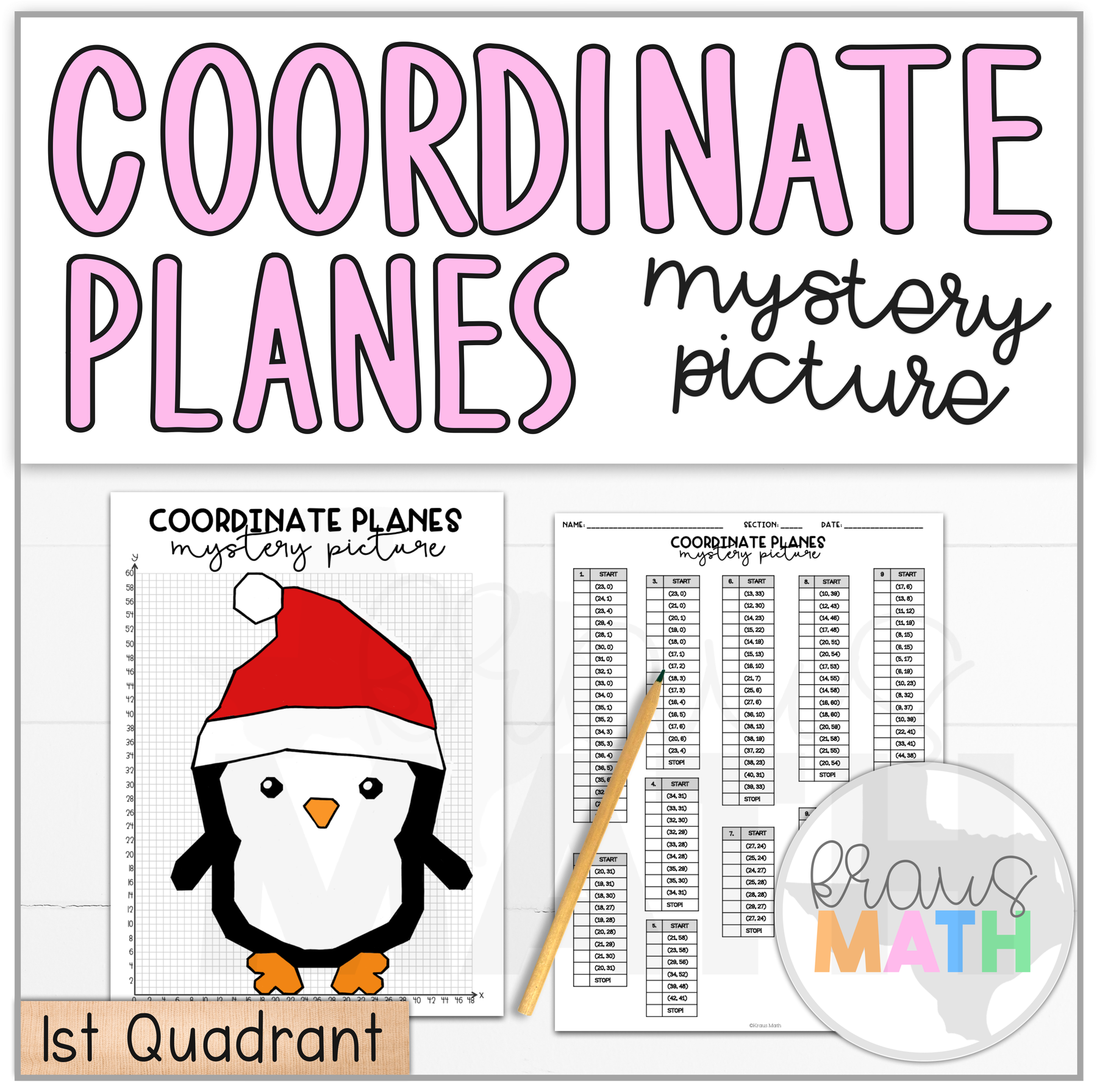 Winter Penguin Coordinate Plane Activity 1st Quadrant