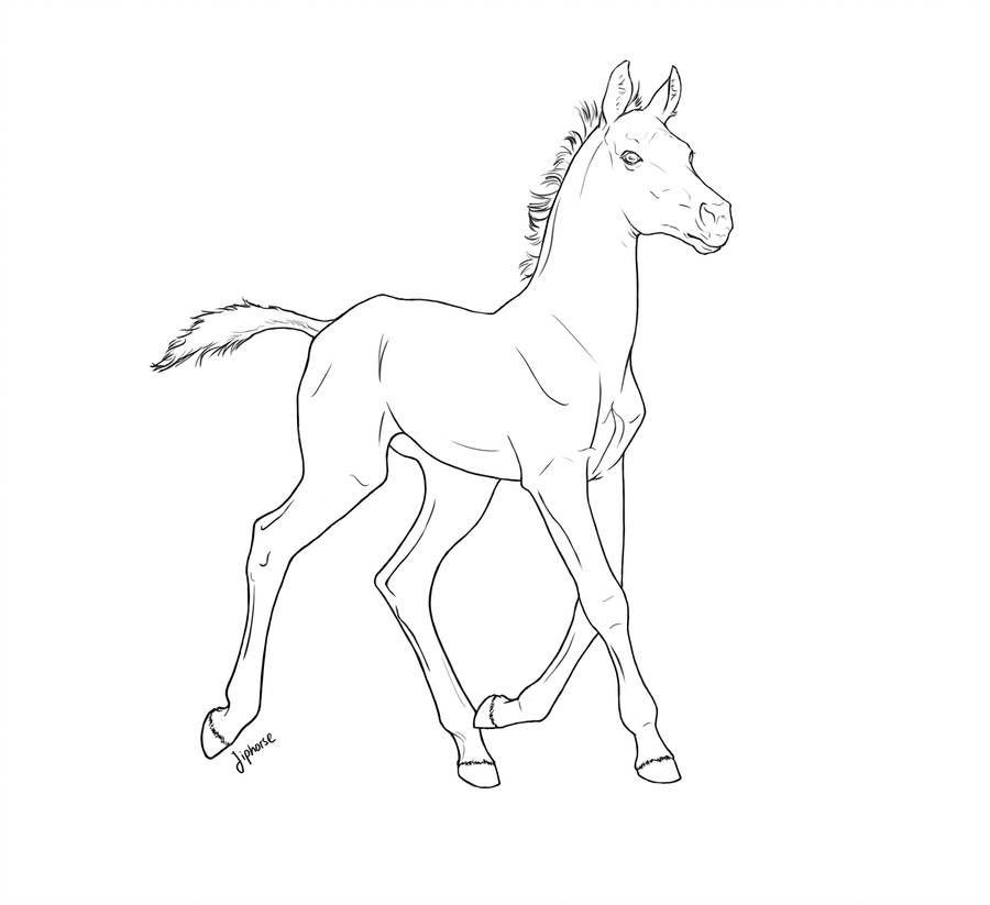 Free Foal Lineart 2 By Jiphorse Cavalli Disegni