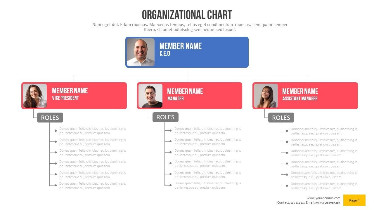 organizational chart power point presentation by