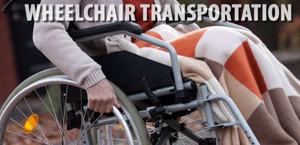 Here is a website that offers wheelchair accessible van