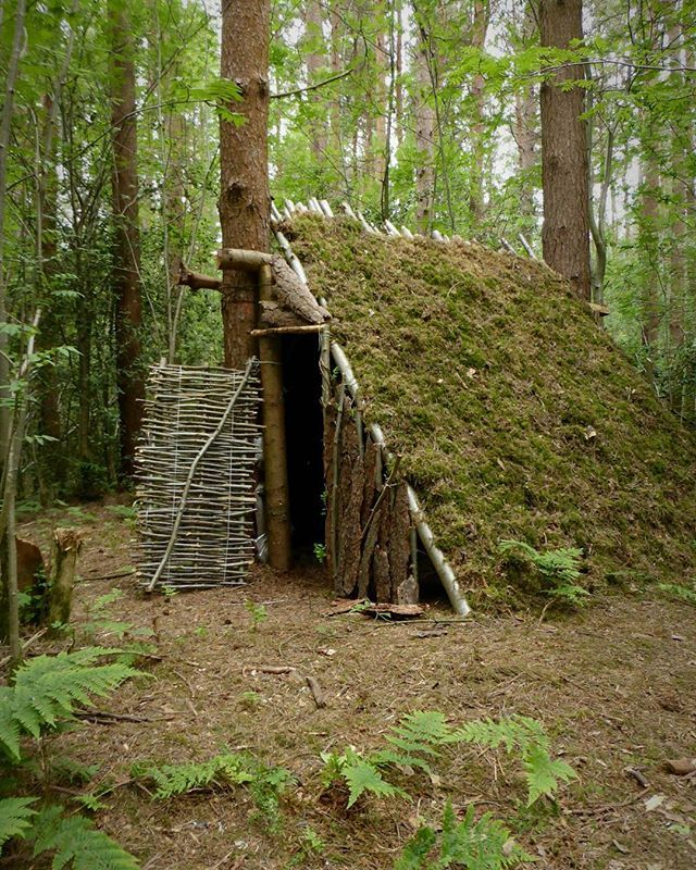 Camping Survival Skills: @thebushcraftcave Are Running A Competition For The Chance