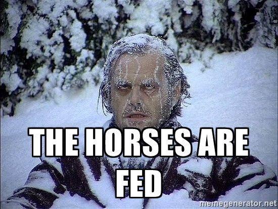 Jack Nicholson Shining Frozen Meme The Horses Are Fed Frozen Jack