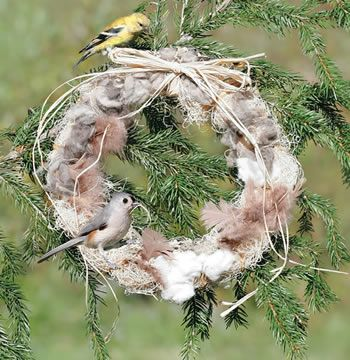 I Cant Wait To Watch The Birds Build Nests Feather Your Nest Wreath Our Refillable Feather A Nest Wreath Is Made Of Bird Nesting Material Wreaths Wild Birds