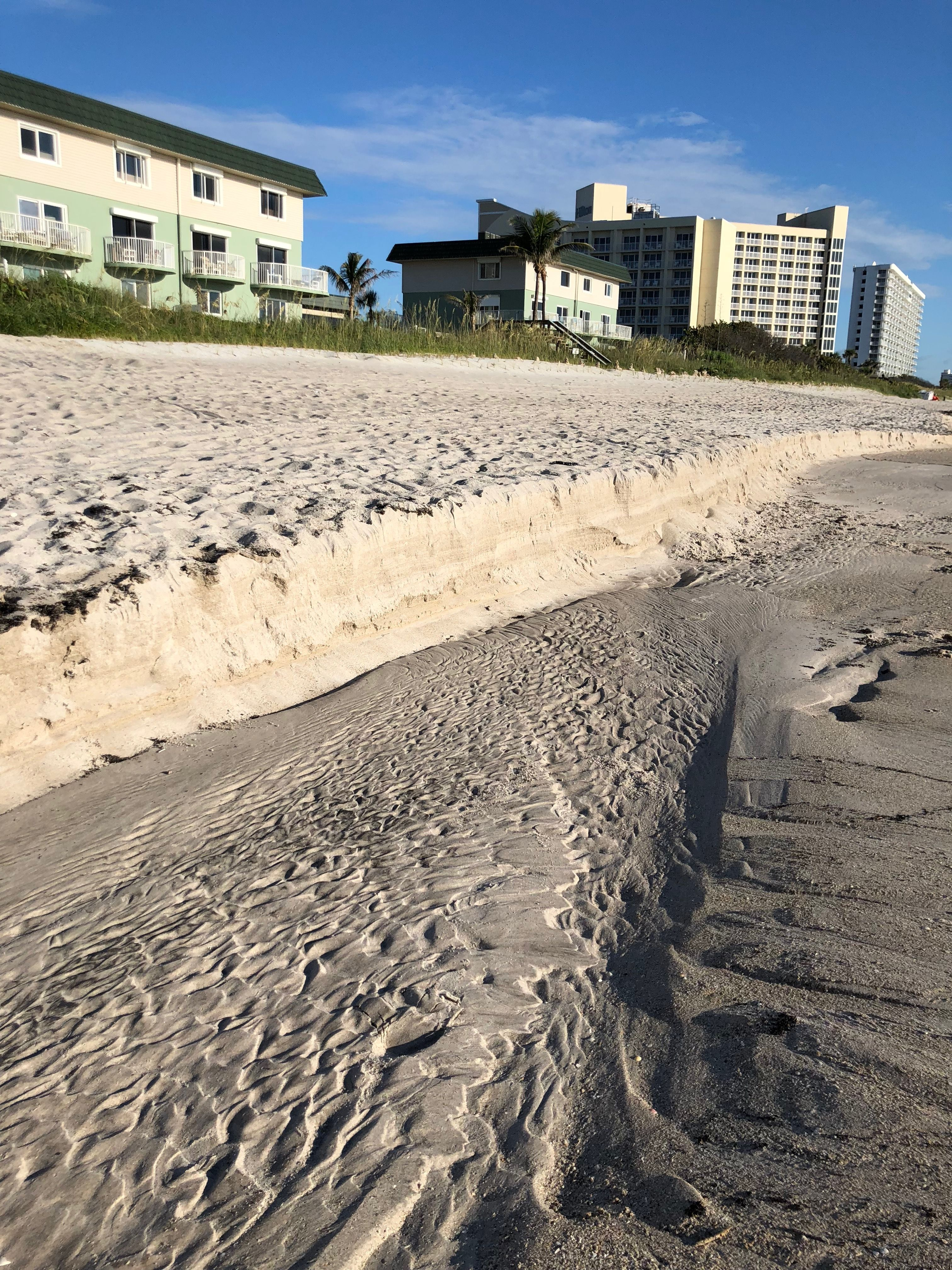 Pin By Amy Ander On Florida Outdoor Beach Florida