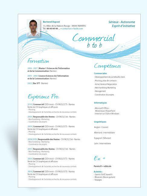 Télécharger Exemple Cv Original Commercial Resumes And Cvs