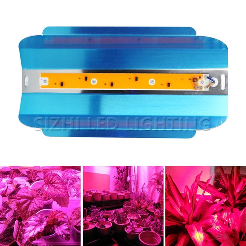 Phones Rc Cars Bluetooth Headphones Toys Speakers Dones Led Grow Grow Lamps Hydroponics