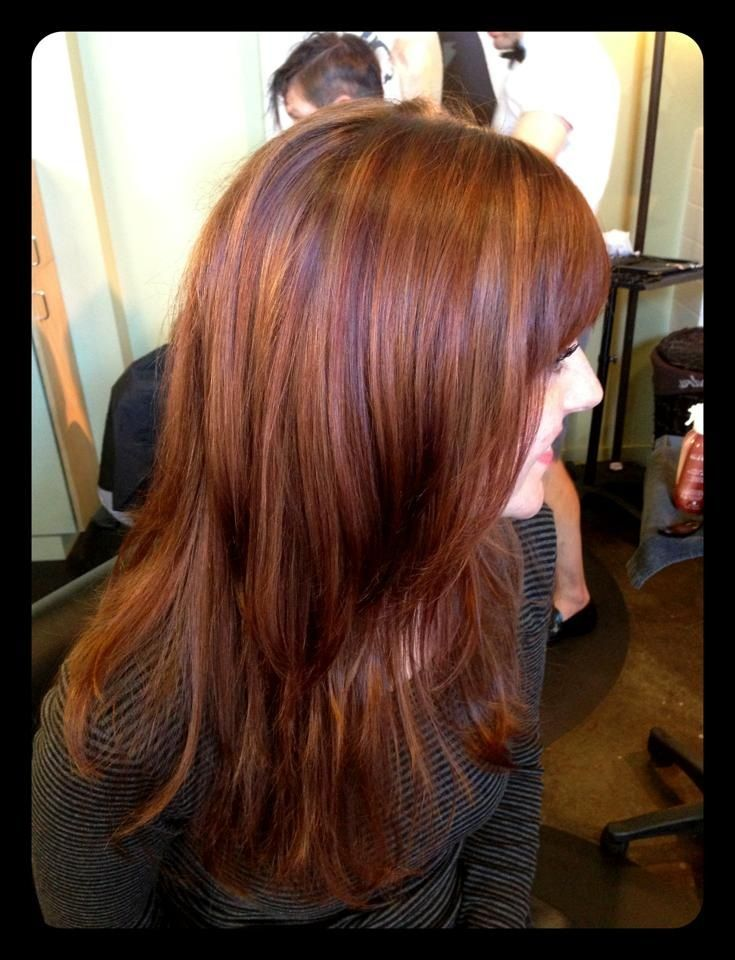 Rose Gold Highlights With Copper Brown And Red Lowlights Description From Pinterest Com I Searched For This On Bi Hair Hair Color Highlights Hair Highlights