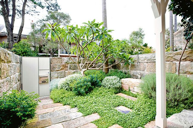 Coastal Garden Design explore front gardens small gardens and more 25 Best Images About Narrow Side Garden On Pinterest