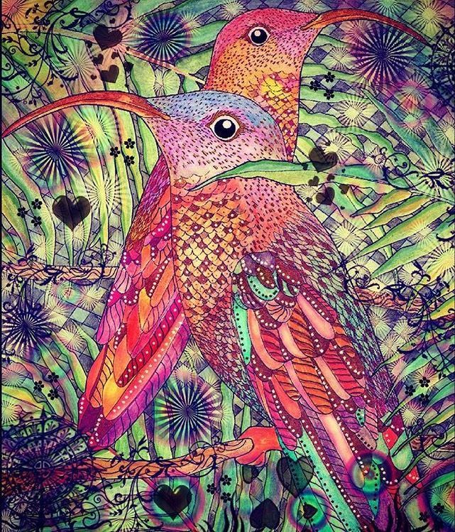 Explore Coloring Books Adult And More