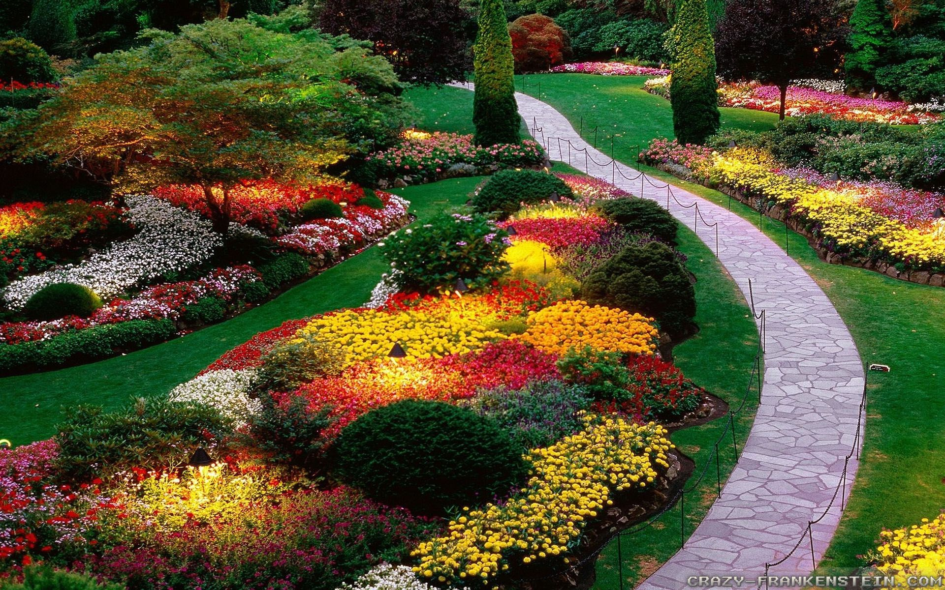Beautiful flower garden hd wallpaper for Beautiful garden images hd