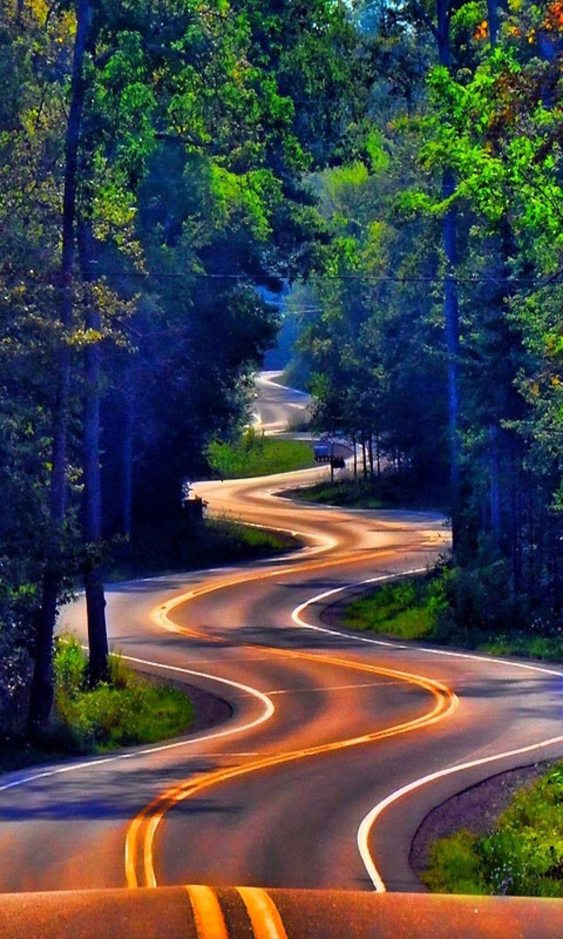 Zigzag beautiful road | Landscape photography | Country ...