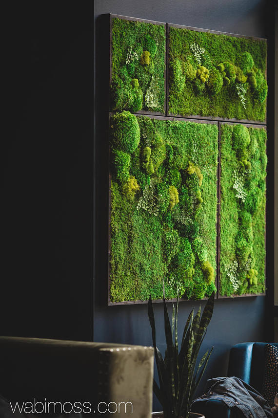 58x58 Real Preserved Moss Wall Art Green Wall Collage Etsy Moss Wall Art Green Wall Decor Moss Wall