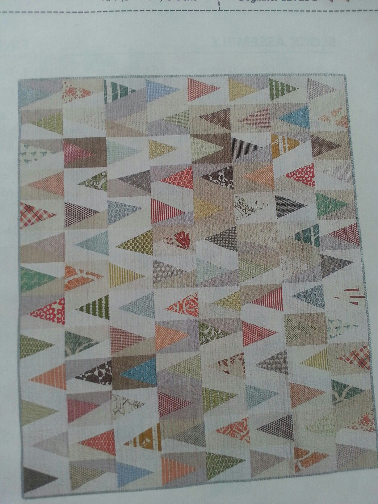 From Fon's & Porter Summer 2016 Triangle Quilts - Trail Marker by Ashley Newcomb - Full quilt - I would just cut this down to the crib size.