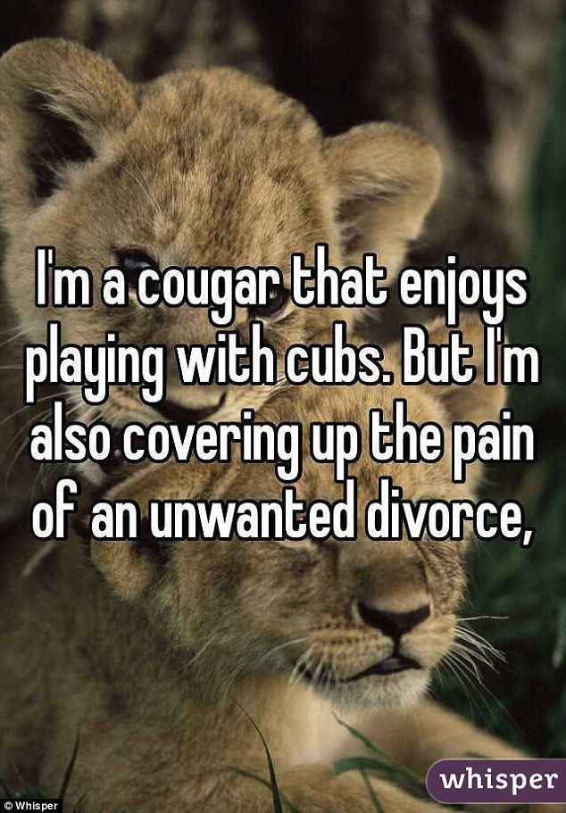 im-dating-a-cougar