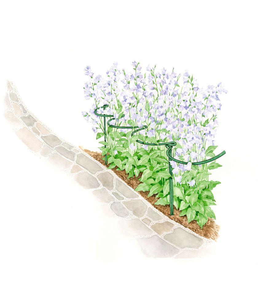 Jardin Half Round Flower Supports Gardener S Supply Plant Supports Flower Landscape Garden Supplies