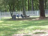 Fayetteville Bark Park