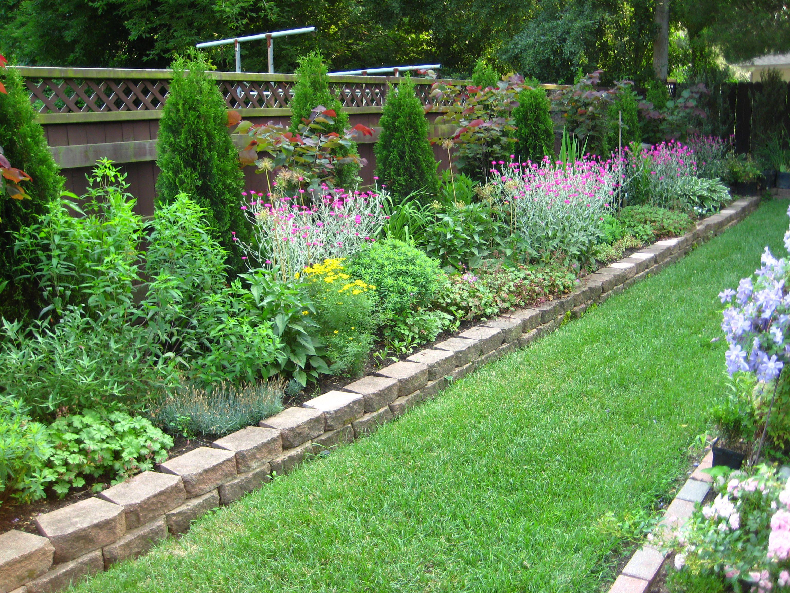 Small backyard garden design ideas - Admirable Minimalist Backyard Structural Garden Flower Bed With Straight Stone Lining And Little Pine Design Idea