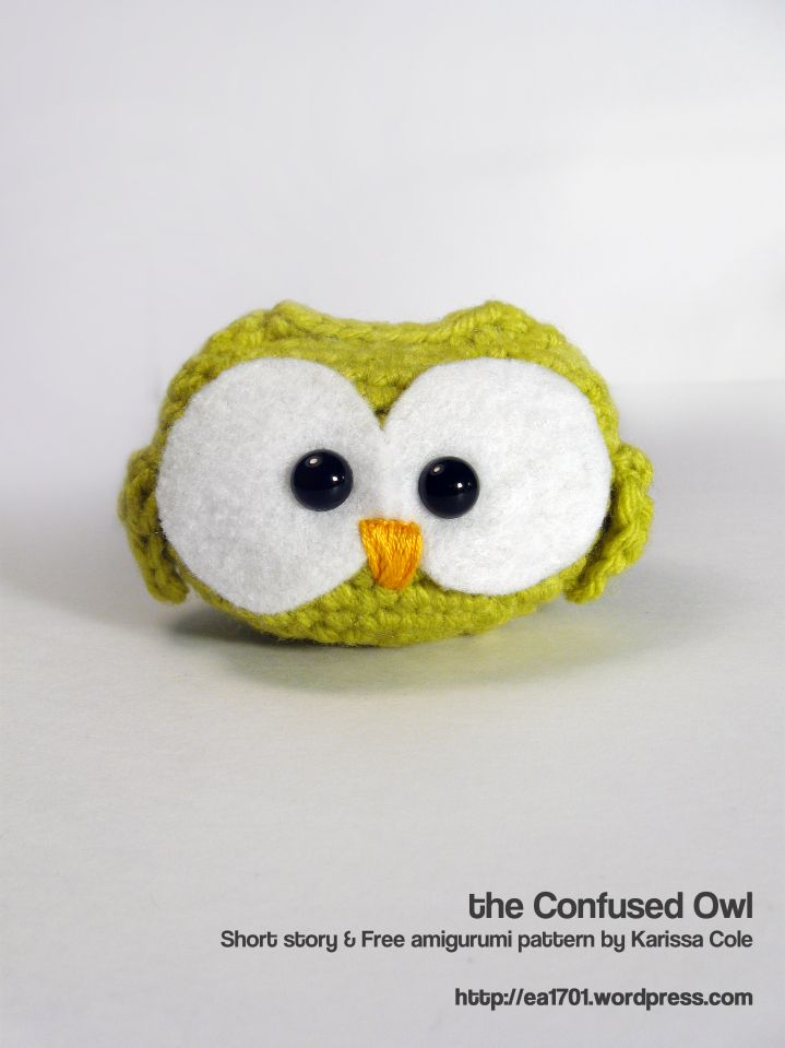 the Confused Owl
