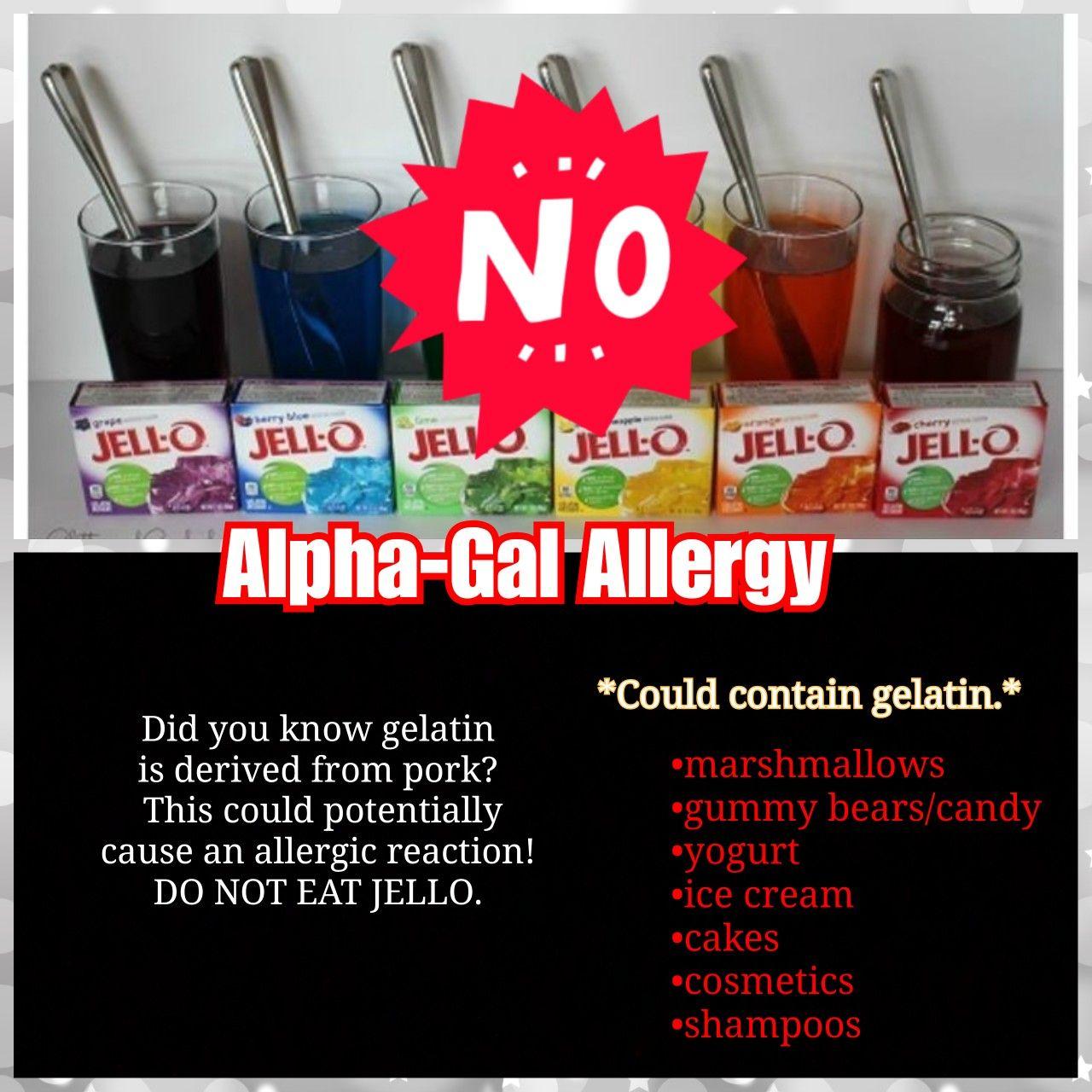 Alpha Gal Allergy Gummy Bear Candy Allergies Do Not Eat