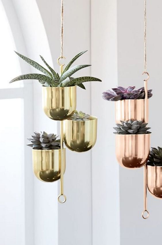40 Beautiful Hanging Plants Ideas For Home Decor Page