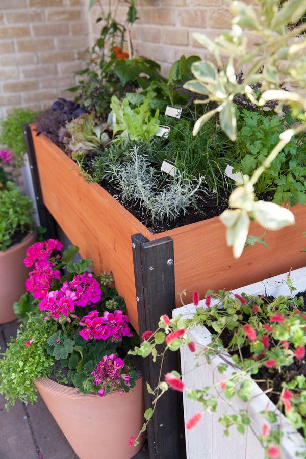 DIY Container Gardens on Handmade Mood