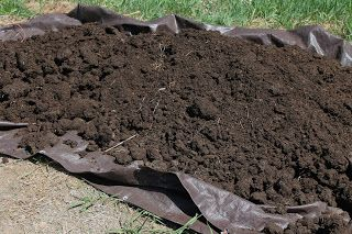 vermont black gold! composted sheep poopexcellent for the garden