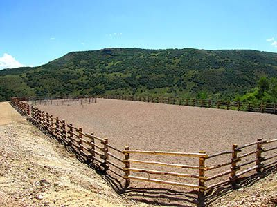 Outdoor arena | Working Ranch | Pinterest | Barn and Horse