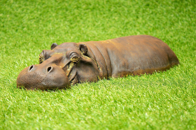 Rusting Cast Iron Resin Hippo Garden Decor Rustic Rusty