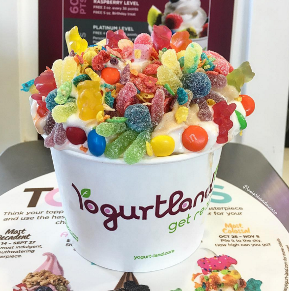 yogurtland usa