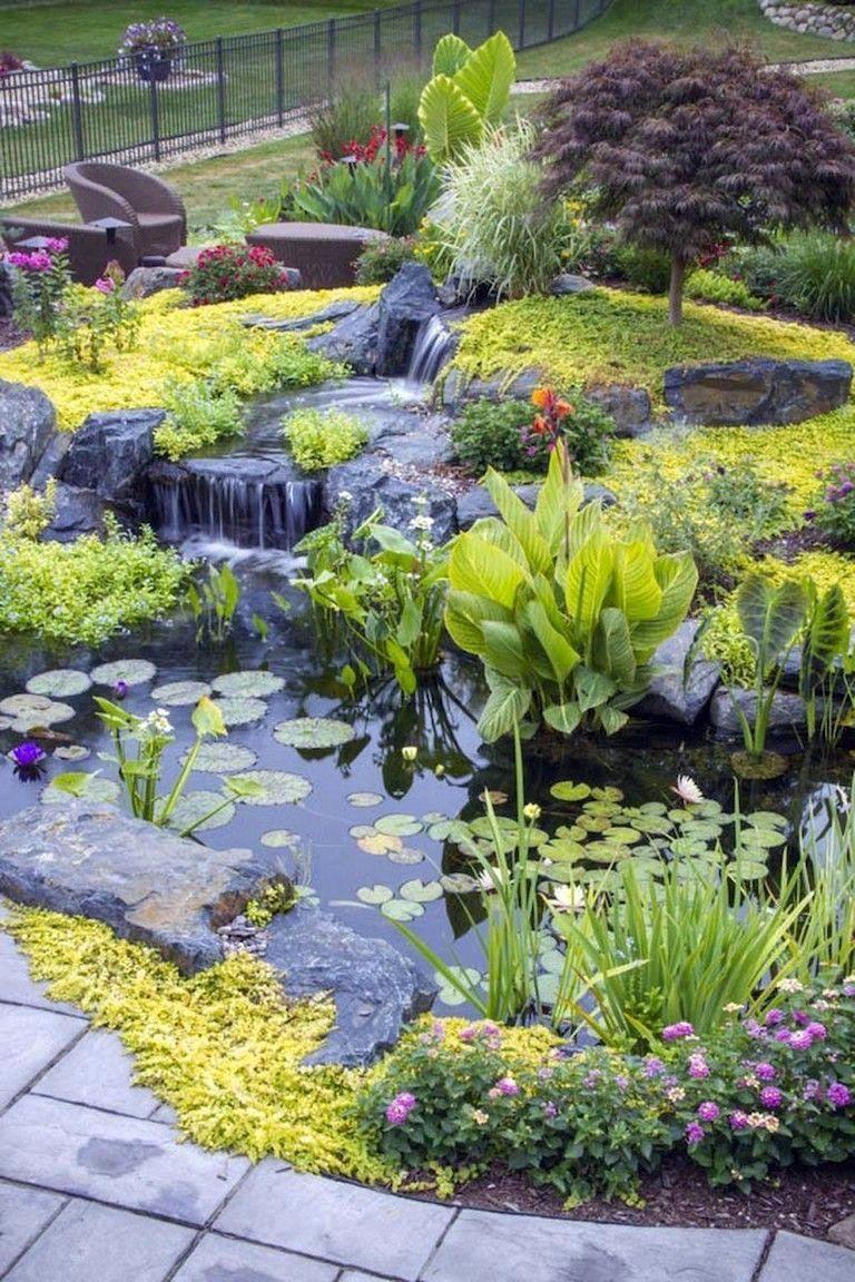 australian native garden design ideas #Gardendesignideas ...