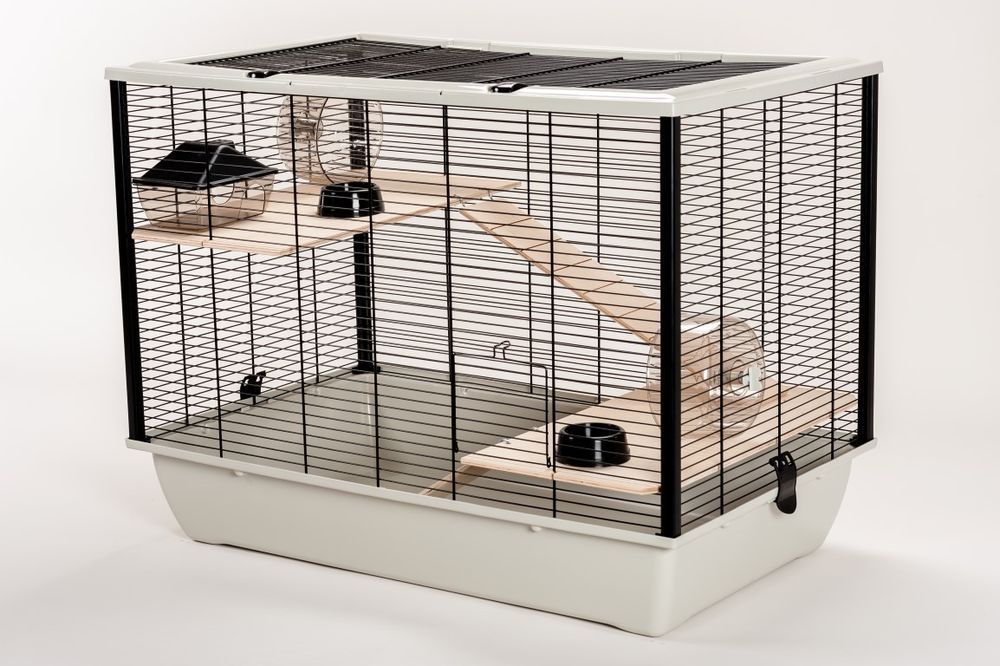 The Syrian Hamster Cage Guide Hamster Cage Mouse Cage Hamster