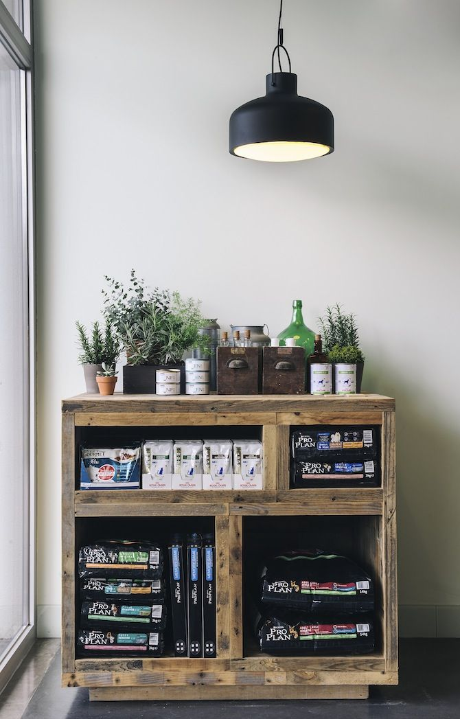 Pet Hospital by Ark Studio Shelves and more Rustic