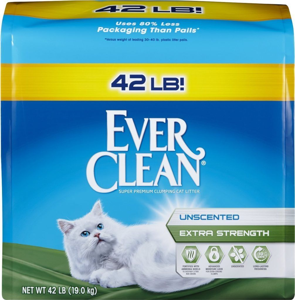 Top 10 Best Cat Litters Reviewed 2017 Best Cat Litter Cheap Cat Litter Clumping Cat Litter