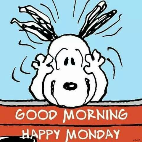 pin by jennifer yahner on snoopy pinterest snoopy charlie brown rh pinterest com