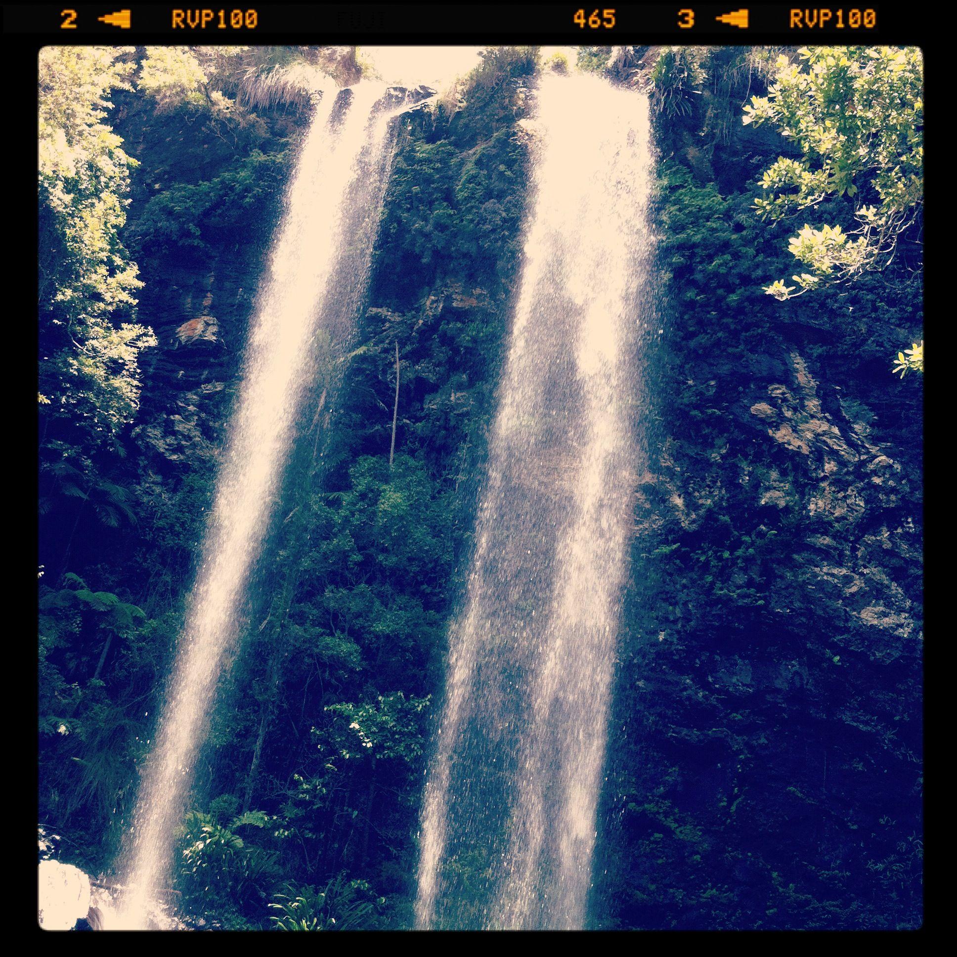 Twin Falls, Springbrook National Park in the Gold Coast Hinterlands, Queensland, Australia