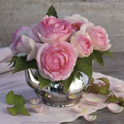 Roses and Teapot P�sters por Catherine Beyler na AllPosters.com.br