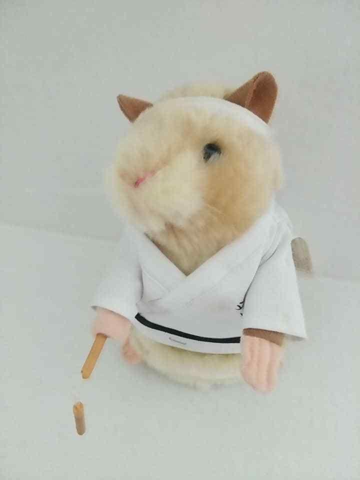 Gemmy Industry Dancing Kung Fu Hamster Gemmy Gemmy