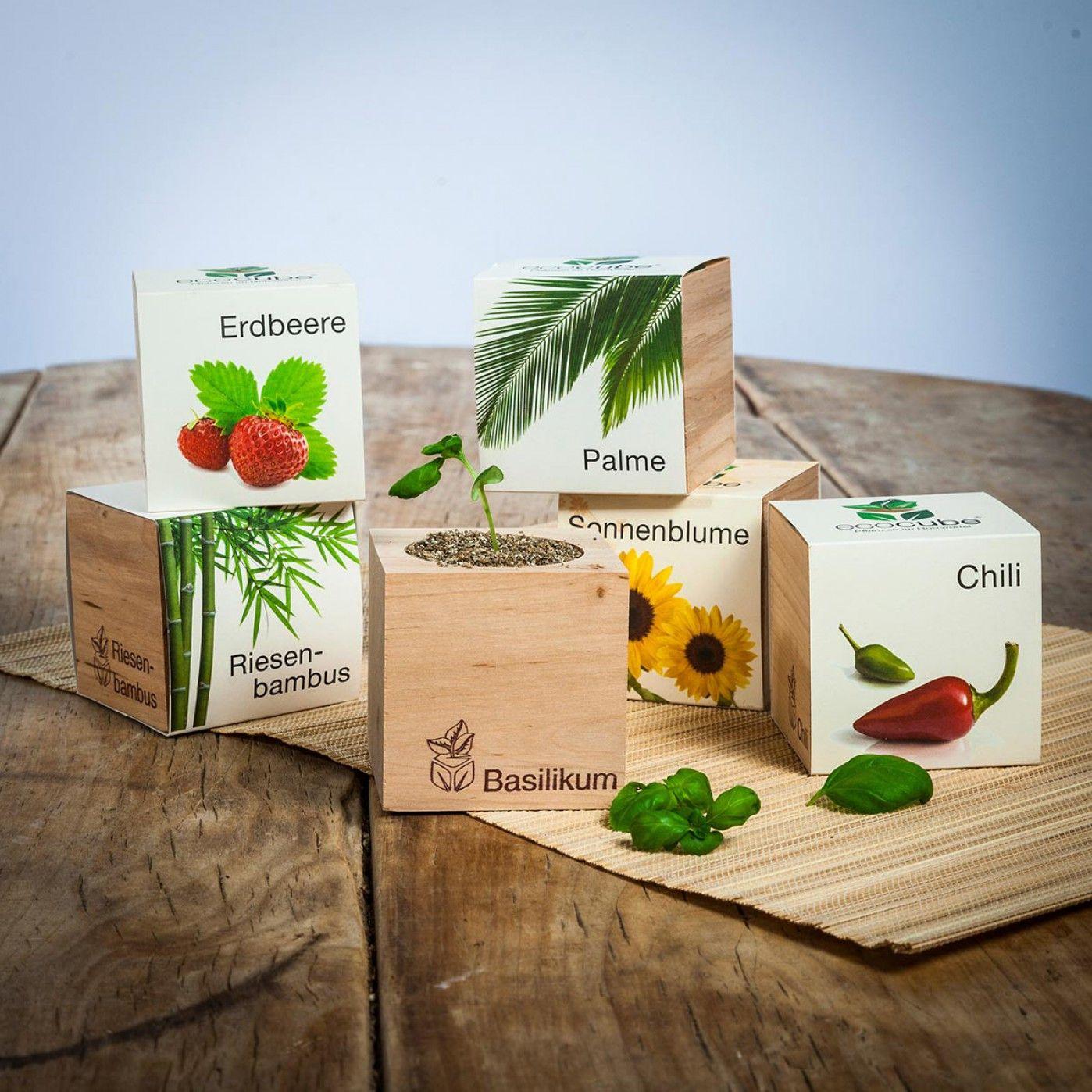 ecocube pflanzen im holzw rfel tolle produkte holzw rfel sch ne geschenke und geschenke. Black Bedroom Furniture Sets. Home Design Ideas