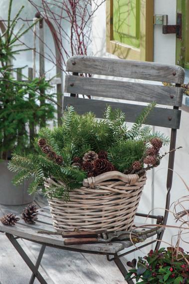 Mein schöner Garten: Pflanzen, Garten & Gartentipps #weihnachtsdekohauseingangaussen