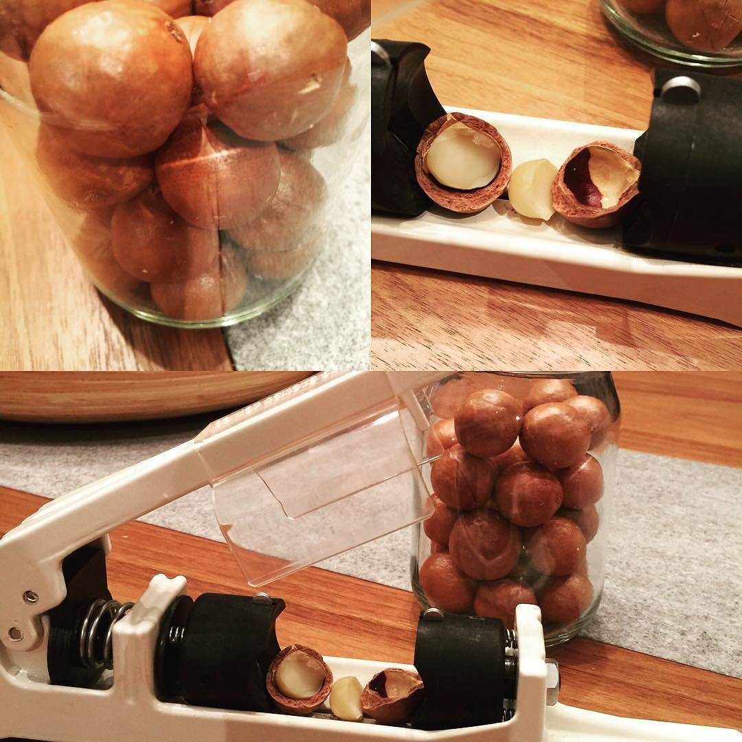 0fb453eb1aac81f36379cae75abba1cd - How To Get Macadamia Nuts Out Of Their Shells