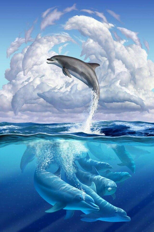 Lumba-lumba : lumba-lumba, Dolphins, Hewan,, Lumba-lumba,, Lukisan, Galaksi