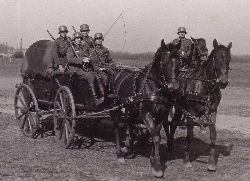 Image result for German WWII horse drawn