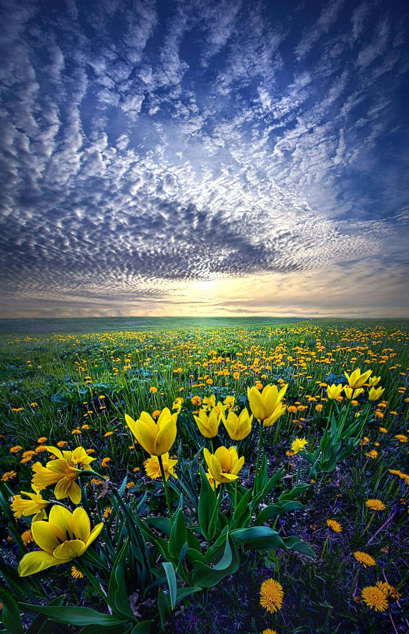Landscape Photography Spring Landscapephotographytips Beautiful Nature Nature Scenes Beautiful Nature Pictures