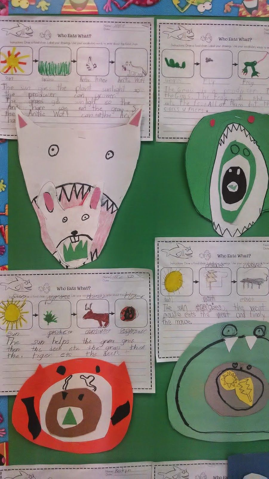 worksheet Biology Food Web Worksheet i have been so proud of the 2nd grade for their hard work over a who eats what food chain worksheet and then made stacked collage focus on lakes streams by using pike or a