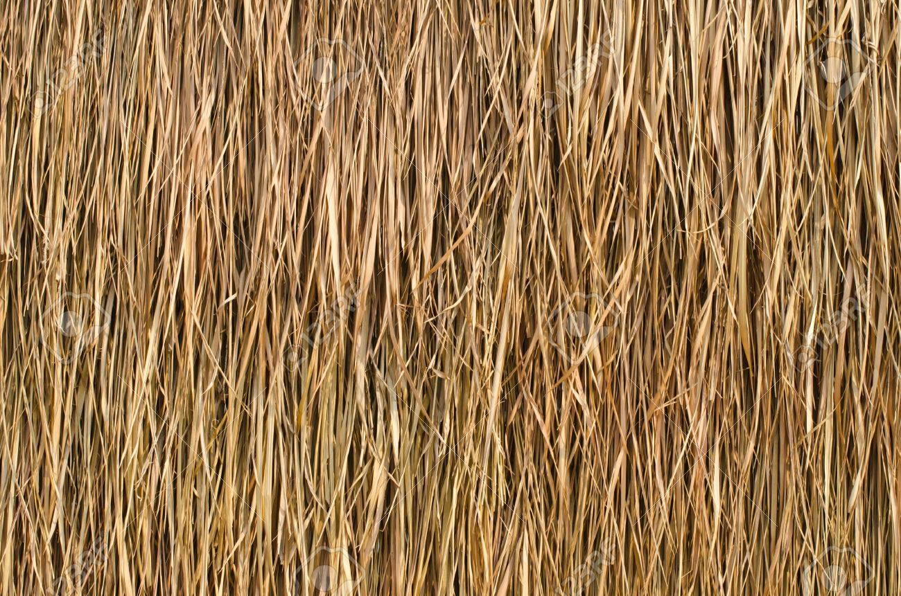 Image Result For Thatch Roof Texture 3dls Thatched