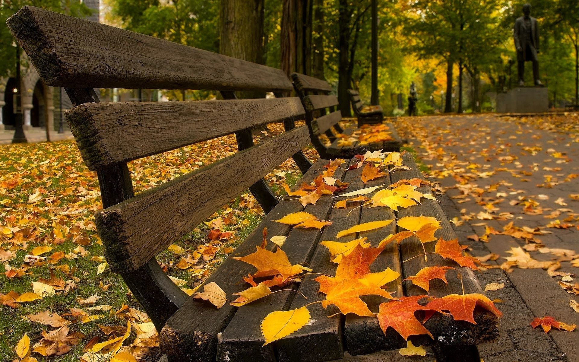 Fall bench leaves depth of field trees hdr nature wallpapers art