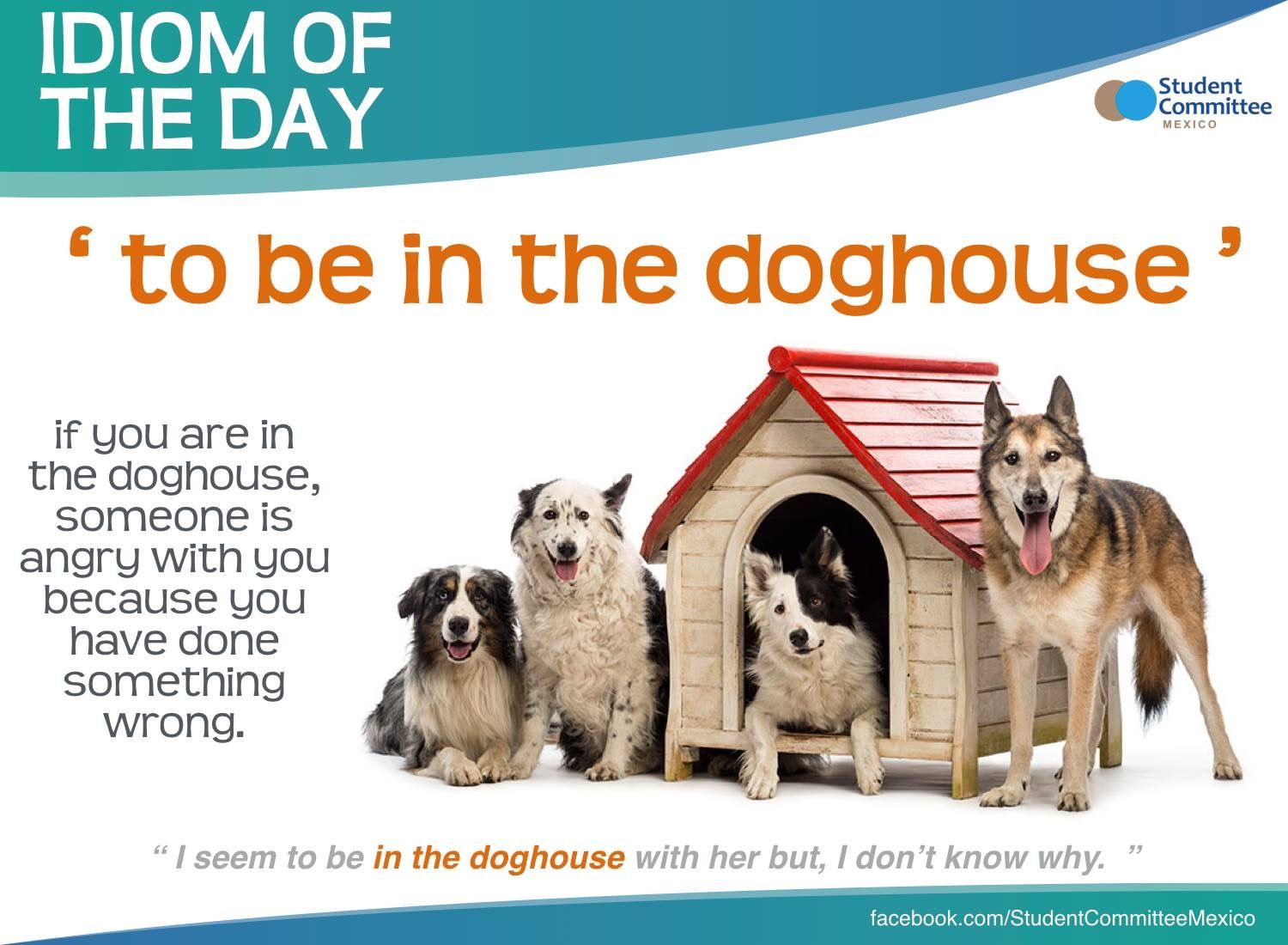 To Be In The Doghouse Idiom Of The Day Idioms English