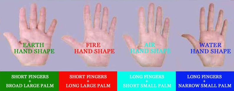 Hand Shape Personality Extraverts Have Wider Palms Introverts